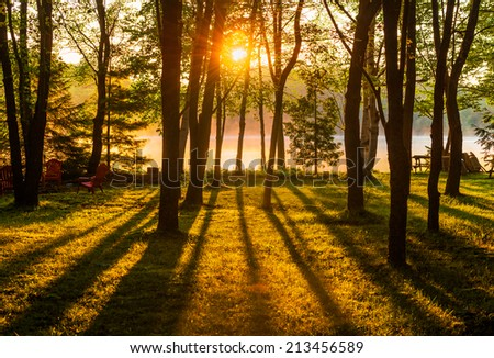 A sunrise shines across a misty lake through trees in a park like setting casting long shadows over the grass in the foreground.  - stock photo