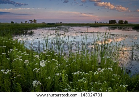 A sunrise sky reflects in the calm surface of Crooked Slough at Springbrook Prairie Forest Preserve, DuPage County, Illinois. - stock photo