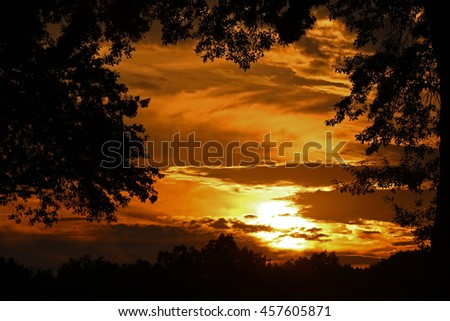 A Sunset Framed with Silhouetted Trees