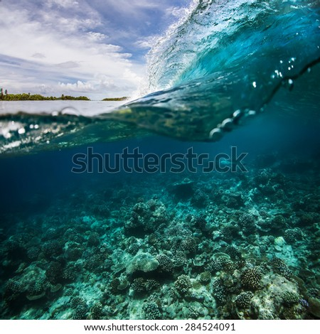A surfing wave with waterline over tropical coral reef
