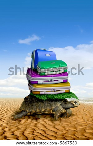 A surreal photo of a turtle carring a load of bright colorful cases along a golden sandy beach with a bright blue summer sky - stock photo