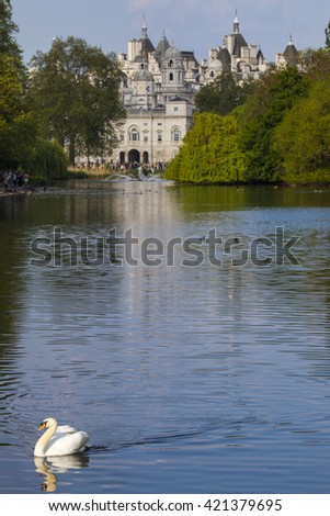 A Swan on the the lake in St. James's Park with the Horse Guards building in London. - stock photo
