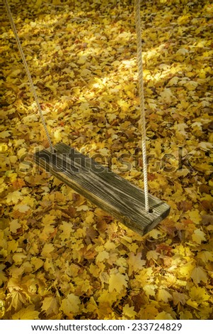 A swing hung from a tree with fall leaves on the ground - stock photo