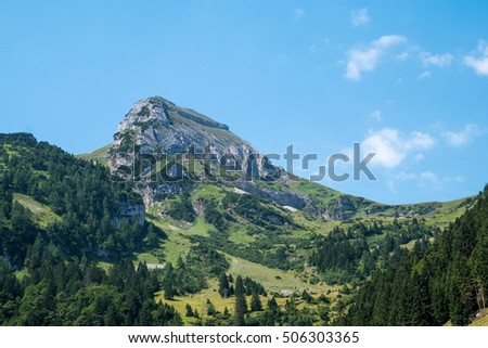 A Swiss mountain peak with forest