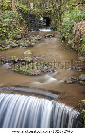 A swollen woodland stream flowing over boulders and weirs as it wends its way over moss covered branches and rocks through a Yorkshire woodland setting along the well walked Pennine bridleway. - stock photo