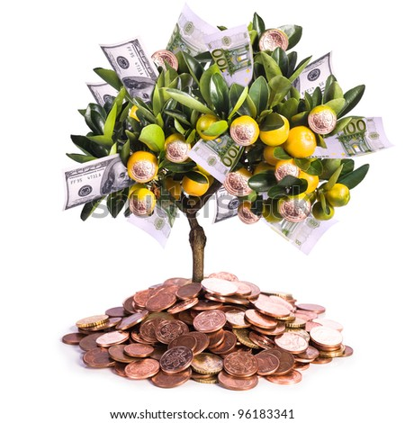a symbolic picture for financial success and money savings - stock photo