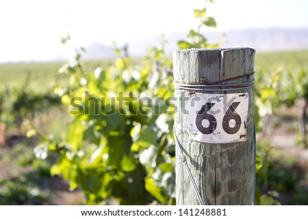 A tag for a row in a vineyard. - stock photo