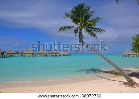 A Tahitian Beach - stock photo