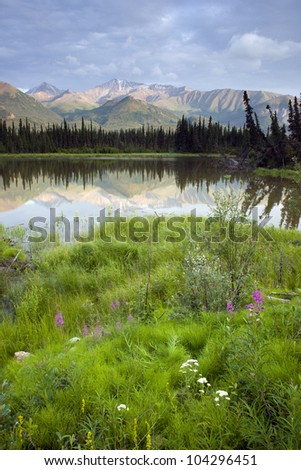 A tarn along the Chugach Mountains and Hwy 1 in Alaska - stock photo
