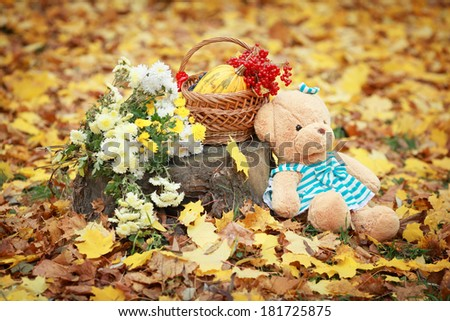 A teddy with basket on the yellow leaves - stock photo