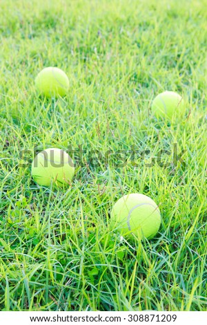 A Tennis ball on green grass