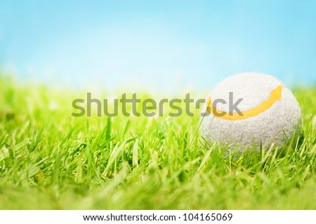 A tennis ball on the grass in front of a blue sunny sky.