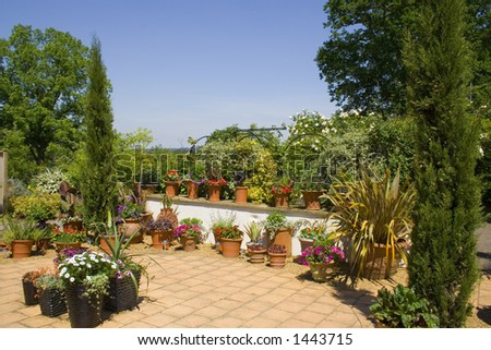 A terraced garden in the sun - stock photo
