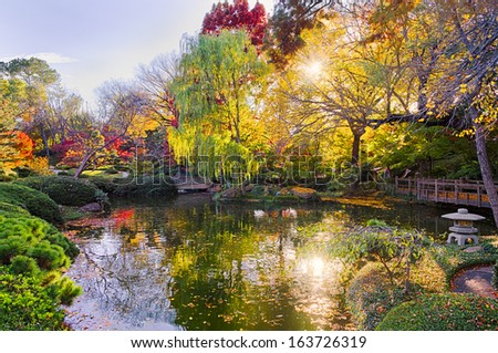 A Texas burst of fall color with pond reflections - stock photo
