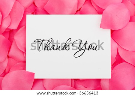 A thank you card sitting on a pink flower petal background, thank you with love - stock photo