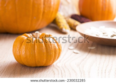 A Thanksgiving themed still life with corn, pumpkins, pumpkin seeds and a turned wooden bowl.  Oak table top.