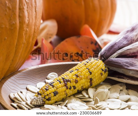 A Thanksgiving themed still life with corn, pumpkins, pumpkin seeds, red leaves and a turned ash wood bowl. Bright backlight. - stock photo