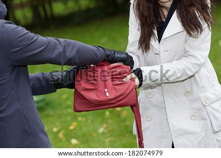 A thief trying to steal a bag from a woman in a park - stock photo