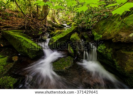A tiny tributary of the Neversink River tumbles through a mossy forest - stock photo