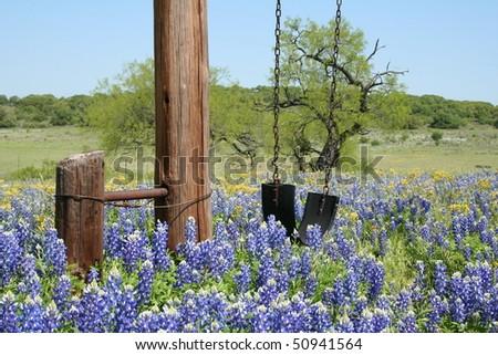 a tire swing in a field of bluebonnets - stock photo