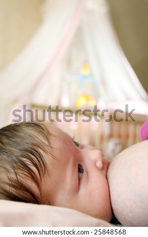 A toddler baby breastfeeding - stock photo