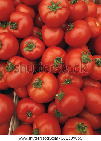 A tomato with tails background - stock photo