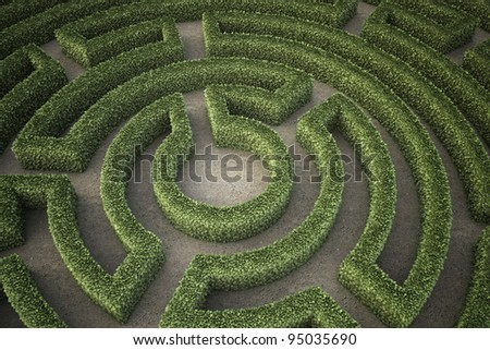 A top view of a garden maze - stock photo