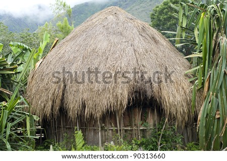 A traditional hut in a mountain village. New Guinea - stock photo