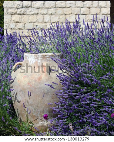 A traditional ornamental jar against a stone wall amidst lush lavenders. - stock photo