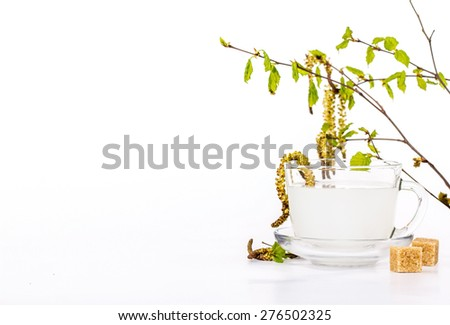 A transparent cup of birch sap decorated with beautiful birch leaves - stock photo