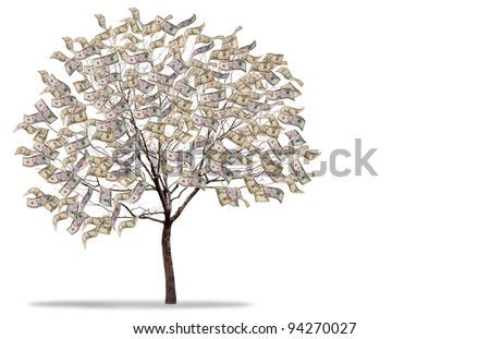 a tree covered in money isolated on a white background - stock photo