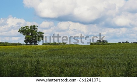 Rural Field Stock Images, Royalty-Free Images & Vectors ...