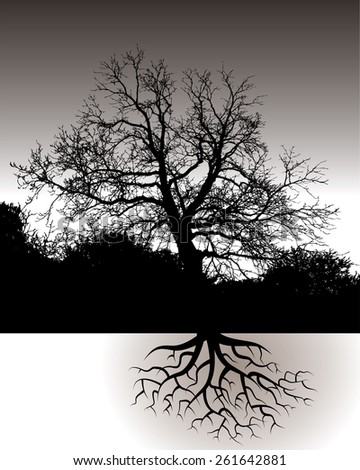 A Tree with Roots Landscape for Print or Web - stock photo