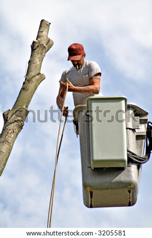 A tree worker in a bucket lift. - stock photo