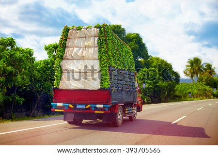 a truck carrying a load of bananas, driving through Dominican Republic road - stock photo