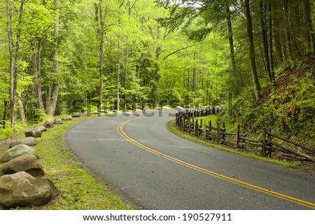 A two lane curved road runs through a forest in eastern Tennessee. - stock photo