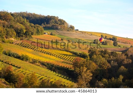 A typical autumnal landscape with vineyards in the Langhe shire, Italy. In this photo there's also a hot air balloon flying over the vineyards at sunset - stock photo