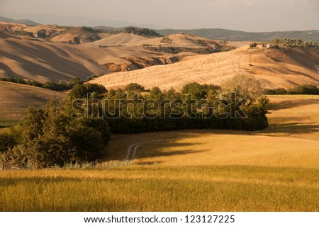 A typical view of Tuscany,Italy