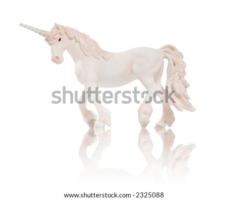 A unicorn isolated over white with reflection - stock photo