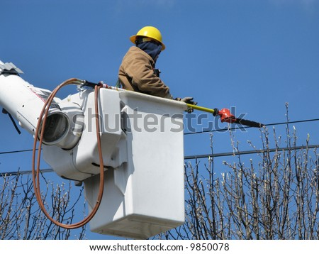 A utility worker removes tree limbs from a power line area while in a bucket truck lift.