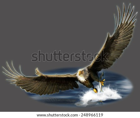 golden eagle fishing variation digital painting bald eagle fishing stock illustration