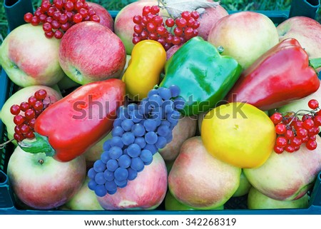 A variety of fruits and vegetables: apples, grapes, berries, elderberry, yellow, red and green peppers. Presents closeup. - stock photo