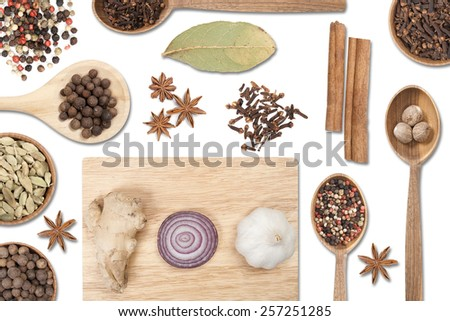 A variety of spices on a white background. Top view. - stock photo