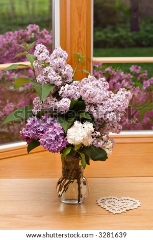 A vase of lilacs sitting inside window - springtime view outside. - stock photo