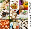 A vegetarian food collage composed by dumplings, rice, lentils, vegetables, mushrooms and tofu. - stock photo