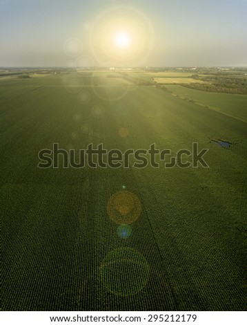 A vertical panoramic agricultural image of the sunset over a South Dakota Corn Field in the Midwest - stock photo