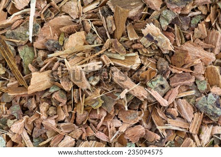 A very close view of shredded witch hazel bark. - stock photo