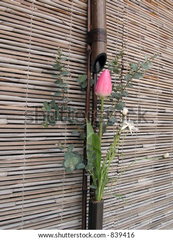 A very specific flowers arrangement,a combination between flowers and bamboo blinds characteristic for spring festivals in Kyoto,Japan. - stock photo