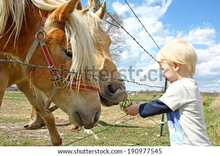 a very young child is standing by a farm fence in the country, feeding grass to two horses.