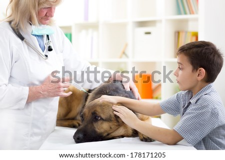 A vet injects vaccine into a German Shepherd  dog while a young boy caresses him. - stock photo